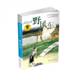 曹文轩纯美小说:野风车