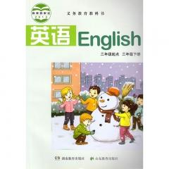 21春 英语三年级下册 湖南教育出版社 新华书店正版图书(限购3本)