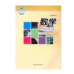 JC 21春 数学九年级下册 新华书店正版图书义务教育教科书