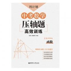 周计划:中考数学压轴题高效训练(函数)华东理工大学出版社刘弢