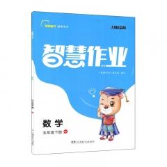 智慧作业·五年级数学下册 RJ 湖南少年儿童出版社 新华书店正版图书