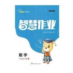 智慧作业数学六年级下册RJ新华书店正版图书